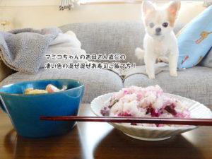マミコちゃんのお母さん直伝の 凄い色の混ぜ混ぜお寿司ご飯でち!