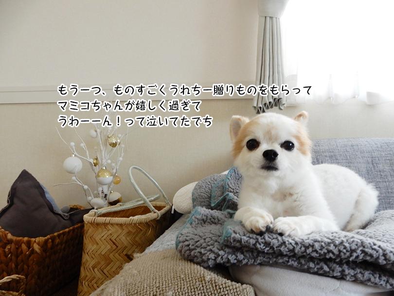 もう一つ、ものすごくうれちー贈りものをもらって マミコちゃんが嬉しく過ぎて うわーーん!って泣いてたでち