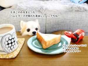 たまごの衣をまとった ハムとチーズが隠れた美味しいパンでちね!