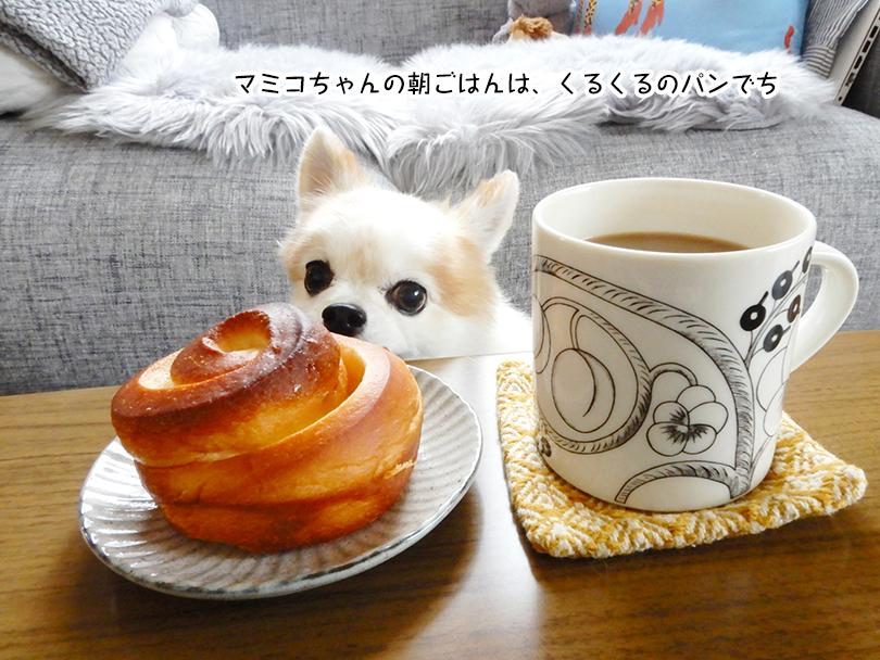 マミコちゃんの朝ごはんは、くるくるのパンでち