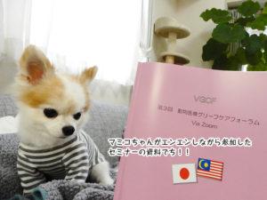 マミコちゃんがエンエンしながら参加した セミナーの資料でち!!