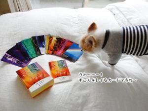うわーーー! すごくキレイなカードでちね~