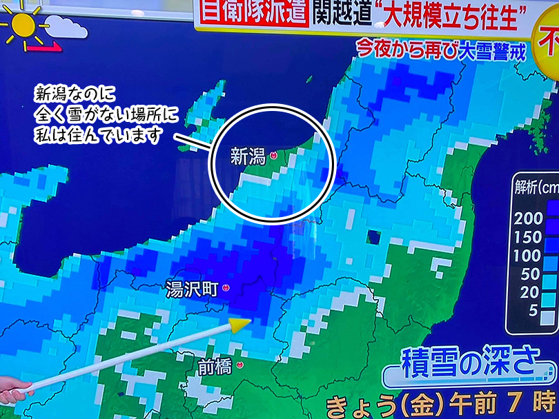 新潟なのに 全く雪がない場所に 私は住んでいます