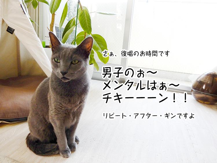 男子のぉ~ メンタルはぁ~ チキーーーン!!