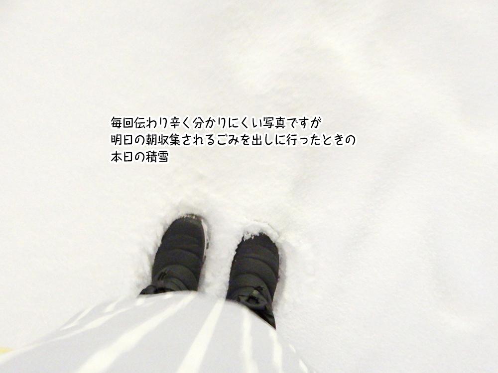 毎回伝わり辛く分かりにくい写真ですが 明日の朝収集されるごみを出しに行ったときの 本日の積雪