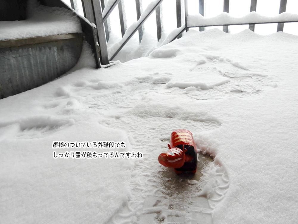 屋根のついている外階段でも しっかり雪が積もってるんですわね