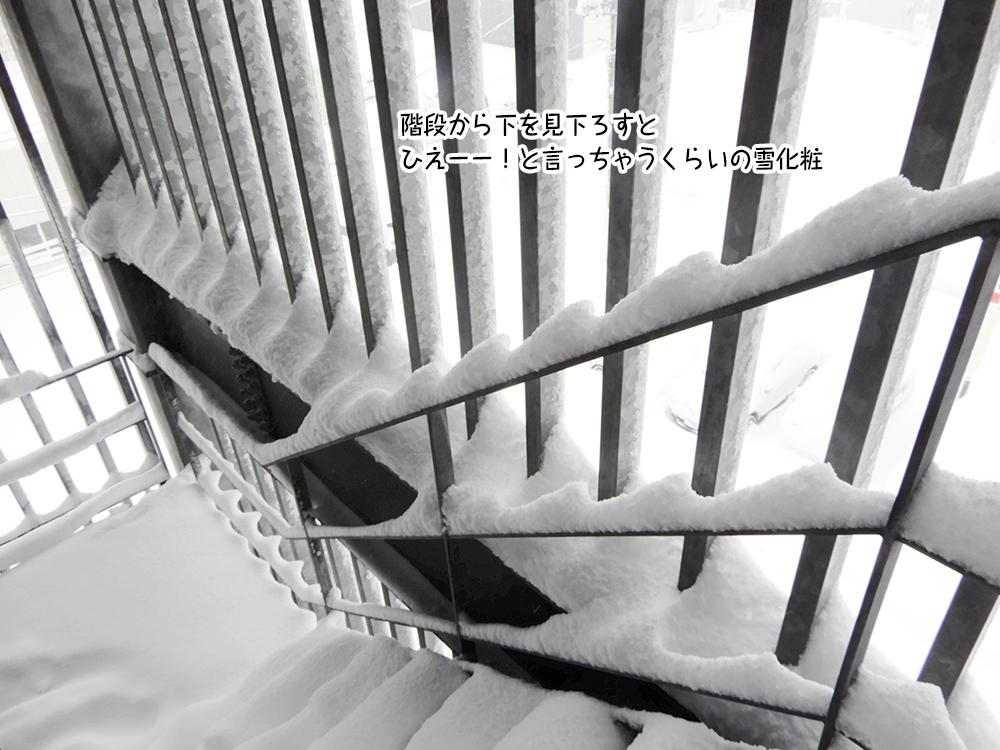 階段から下を見下ろすと ひえーー!と言っちゃうくらいの雪化粧