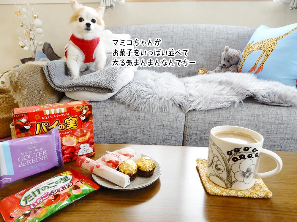 マミコちゃんが お菓子をいっぱい並べて 太る気まんまんなんでちー