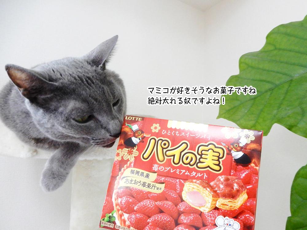 マミコが好きそうなお菓子ですね 絶対太れる奴ですよね!