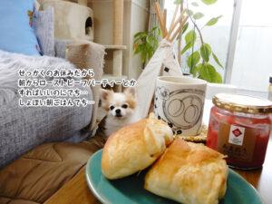 せっかくのお休みだから 朝からローストビーフパーティーとか すればいいのにでち… しょぼい朝ごはんでち…