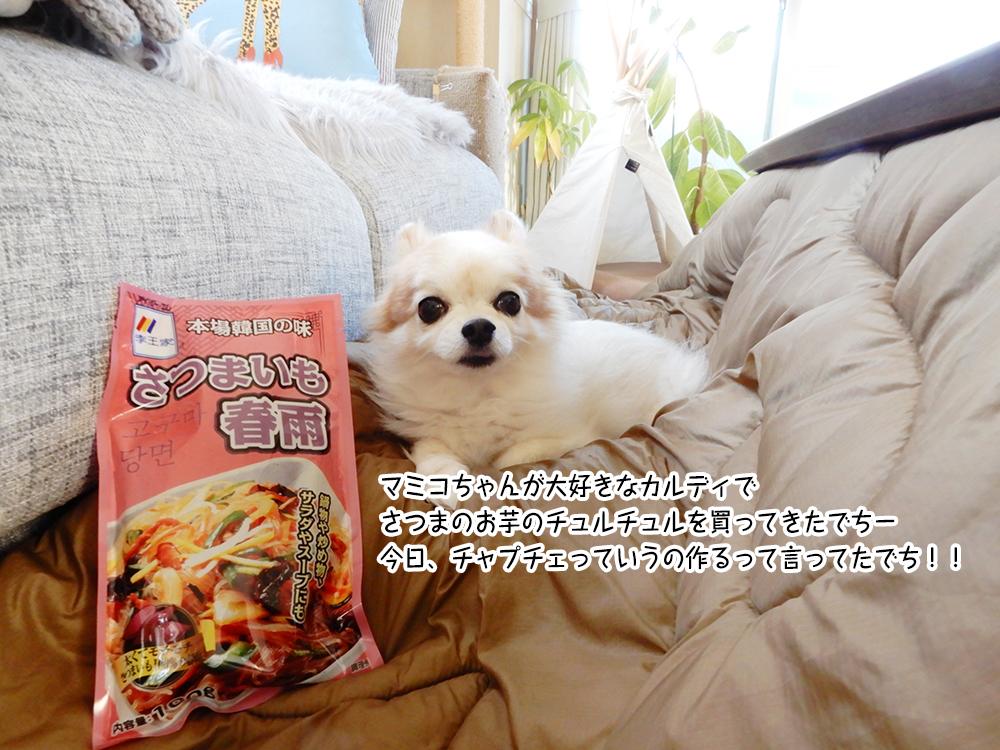 マミコちゃんが大好きなカルディで さつまのお芋のチュルチュルを買ってきたでちー 今日、チャプチェっていうの作るって言ってたでち!!