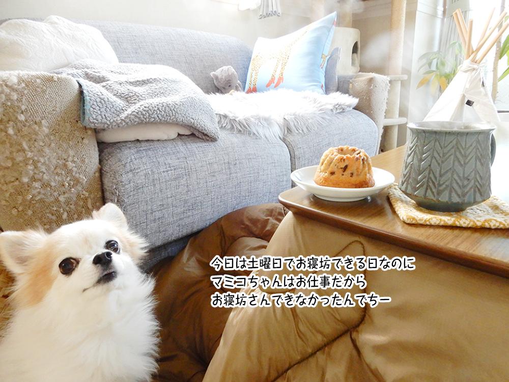 今日は土曜日でお寝坊できる日なのに マミコちゃんはお仕事だから お寝坊さんできなかったんでちー