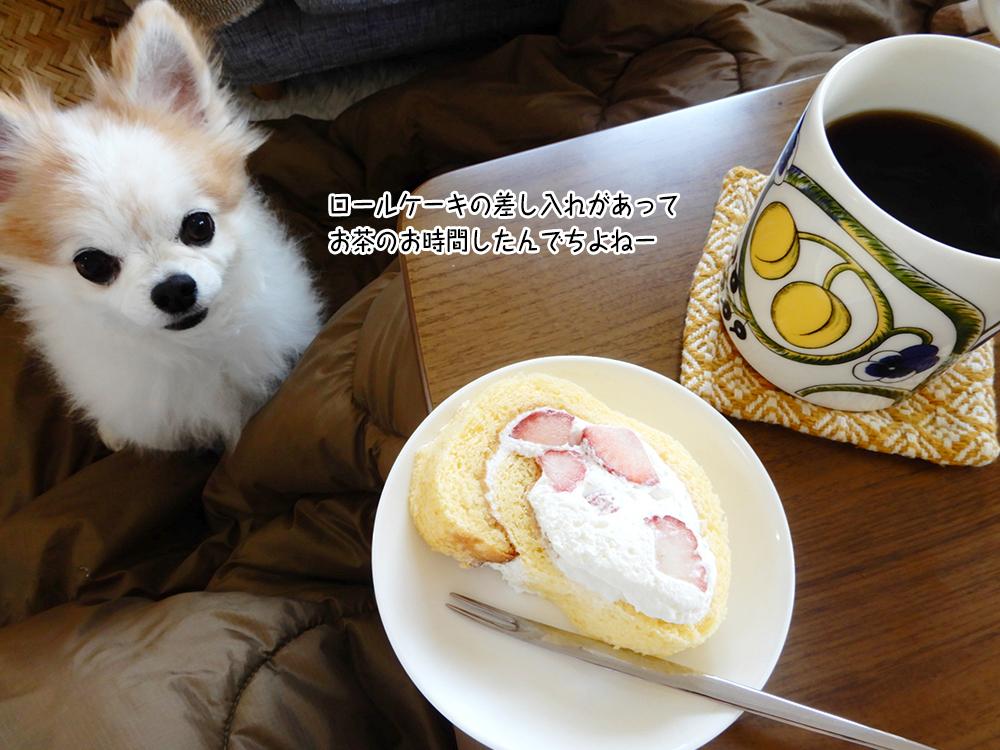 ロールケーキの差し入れがあって お茶のお時間したんでちよねー