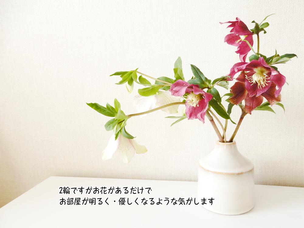 2輪ですがお花があるだけで お部屋が明るく・優しくなるような気がします