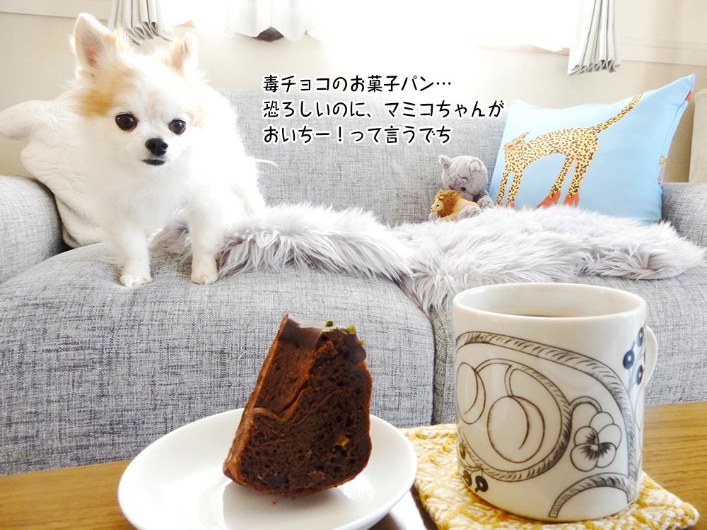 毒チョコのお菓子パン… 恐ろしいのに、マミコちゃんが おいちー!って言うでち