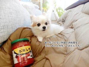 食べたことない外国のお料理を マミコちゃんが作ってみたんでち!