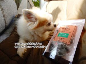 マミコちゃんがお気に入りの 外国のブドウのニーがするお茶でち