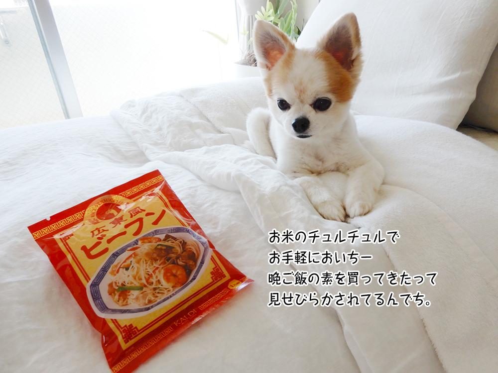 お米のチュルチュルで お手軽においちー 晩ご飯の素を買ってきたって 見せびらかされてるんでち。