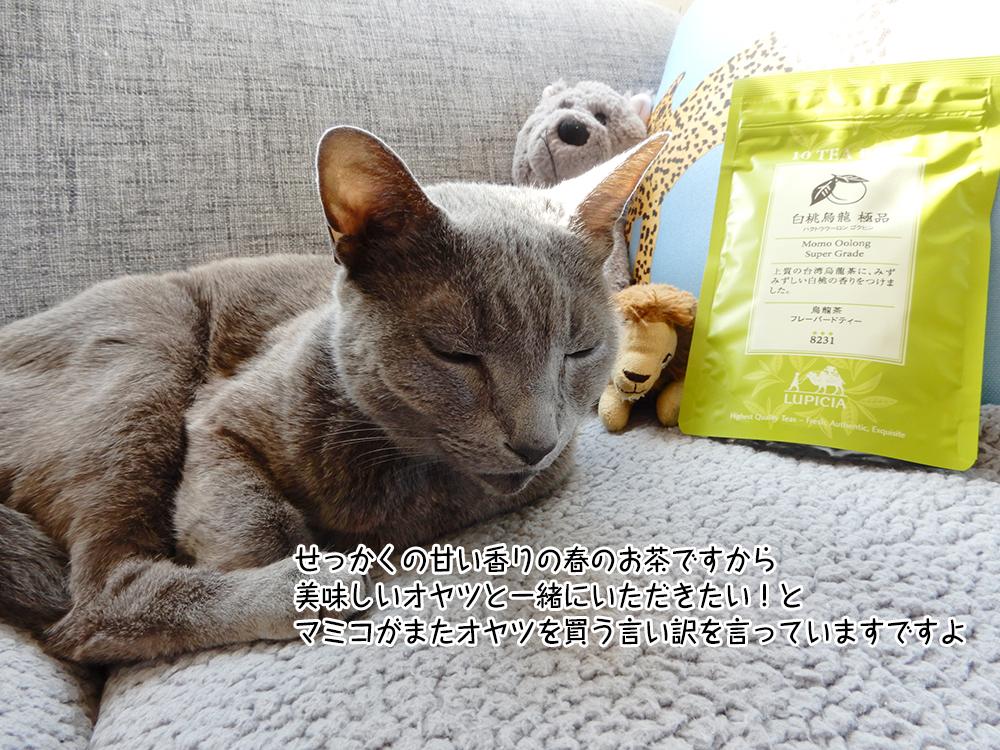 せっかくの甘い香りの春のお茶ですから 美味しいオヤツと一緒にいただきたい!と マミコがまたオヤツを買う言い訳を言っていますですよ