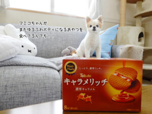 マミコちゃんが またゆるふわボディになるおやつを 食べてるんでち!!