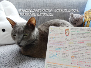 マミコがなんだか嬉しそうにノートを書いていたですよ。 チマチマするの、好きですよね。