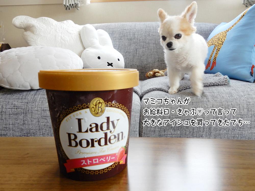 マミコちゃんが お給料日・きゃふ♡って言って 大きなアイシュを買ってきたでち…