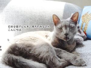 日本全国アレルギー持ちのみなさん こんにちは。