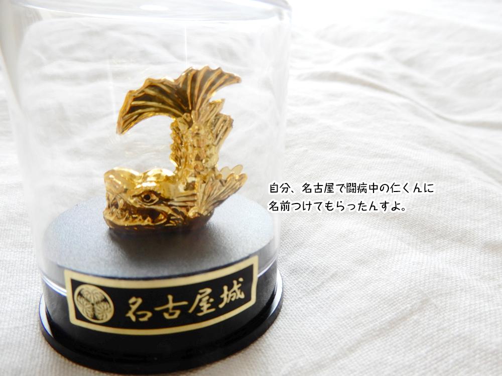 自分、名古屋で闘病中の仁くんに 名前つけてもらったんすよ。