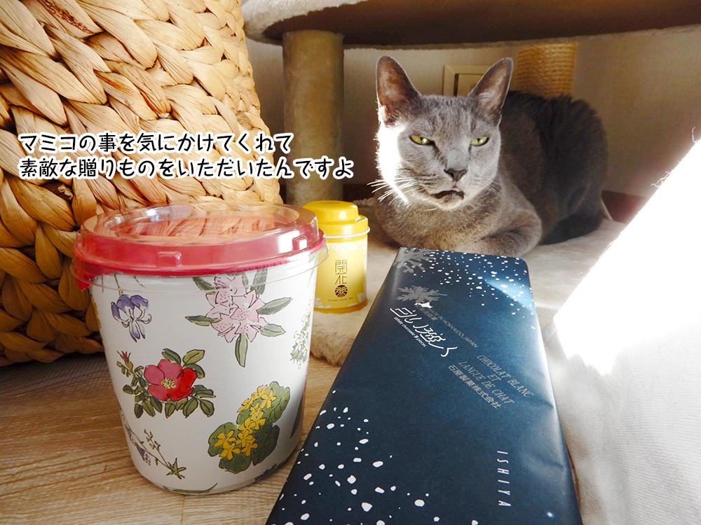 マミコの事を気にかけてくれて 素敵な贈りものをいただいたんですよ