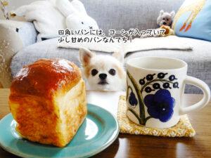 四角いパンには、コーンが入っていて 少し甘めのパンなんでち!