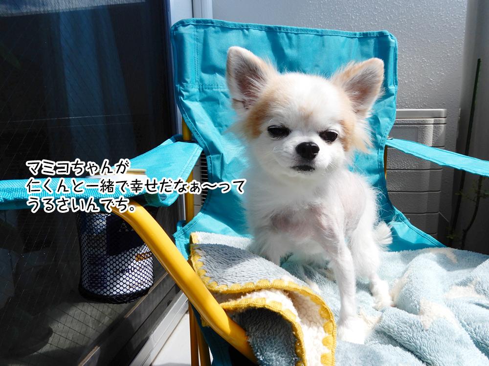 マミコちゃんが、仁くんと一緒で幸せだなぁ~ってうるさいんでち。