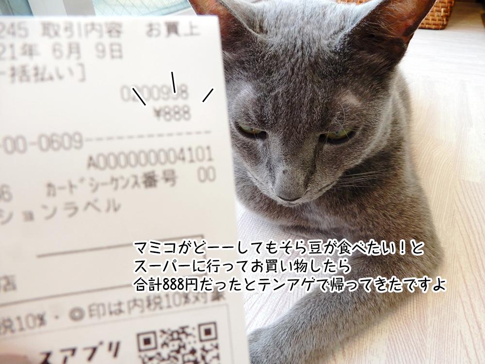 マミコがどーーしてもそら豆が食べたい!と スーパーに行ってお買い物したら 合計888円だったとテンアゲで帰ってきたですよ