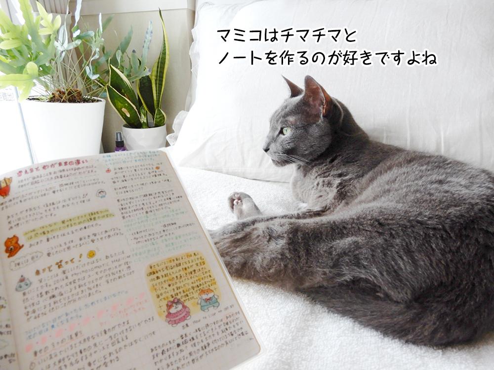 マミコはチマチマと ノートを作るのが好きですよね