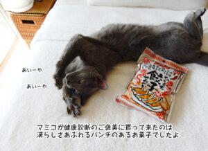 マミコが健康診断のご褒美に買って来たのは 漢らしさあふれる パンチのあるお菓子でしたよ