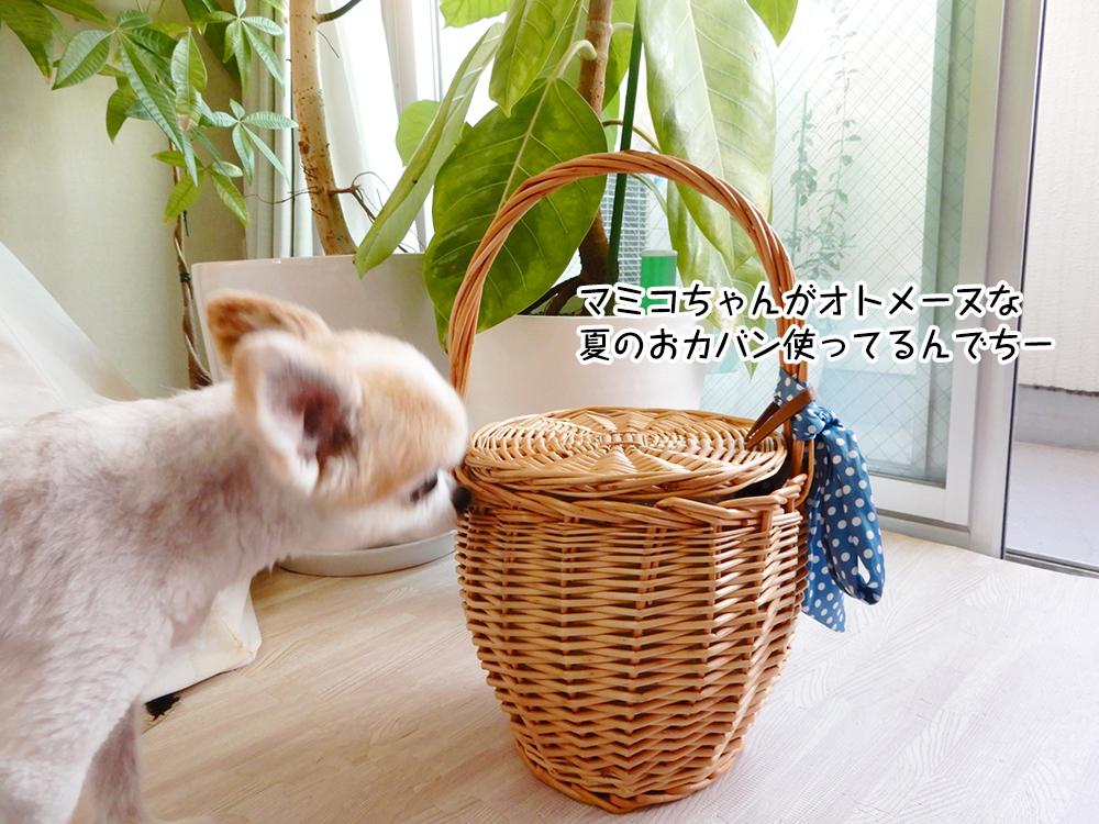 マミコちゃんがオトメーヌな 夏のおカバン使ってるんでちー