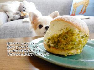 緑のクリームテロでち… 緑のナッツのクリームで 大人女子が好きなんだって マミコちゃんが教えてくれたでち