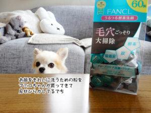 お顔をきれいに洗うための粉を マミコちゃんが買ってきて 見せびらかしてるでち