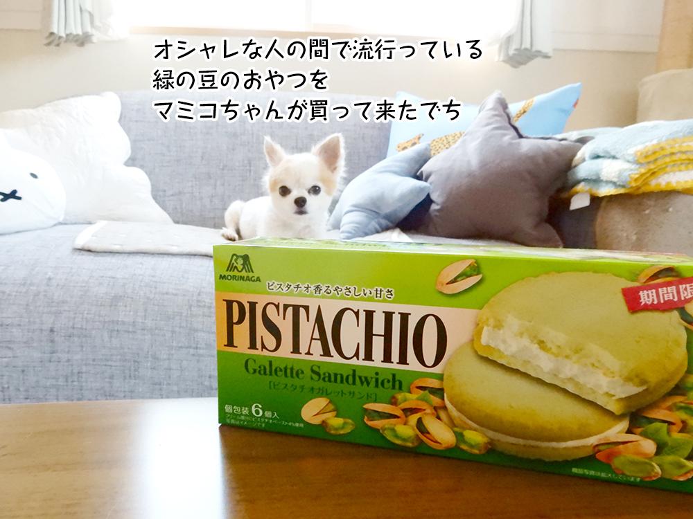 オシャレな人の間で流行っている緑の豆のおやつをマミコちゃんが買って来たでち