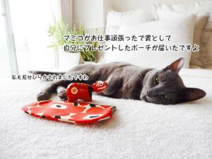 マミコがお仕事頑張ったで賞として 自分にプレゼントしたポーチが届いたですよ