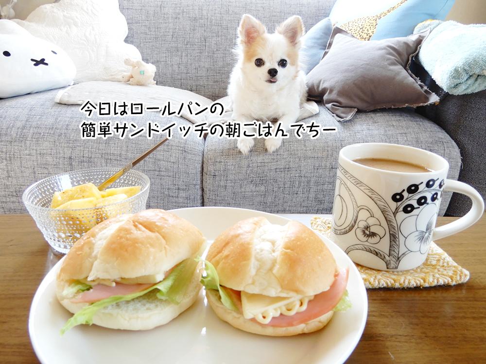 今日はロールパンの 簡単サンドイッチの朝ごはんでちー