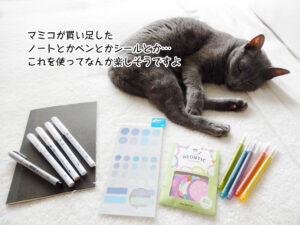 マミコが買い足した ノートとかペンとかシールとか… これを使ってなんか楽しそうですよ