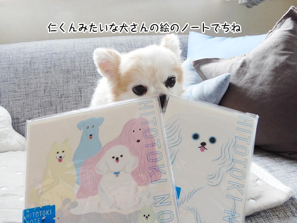 仁くんみたいな犬さんの絵のノートでちね