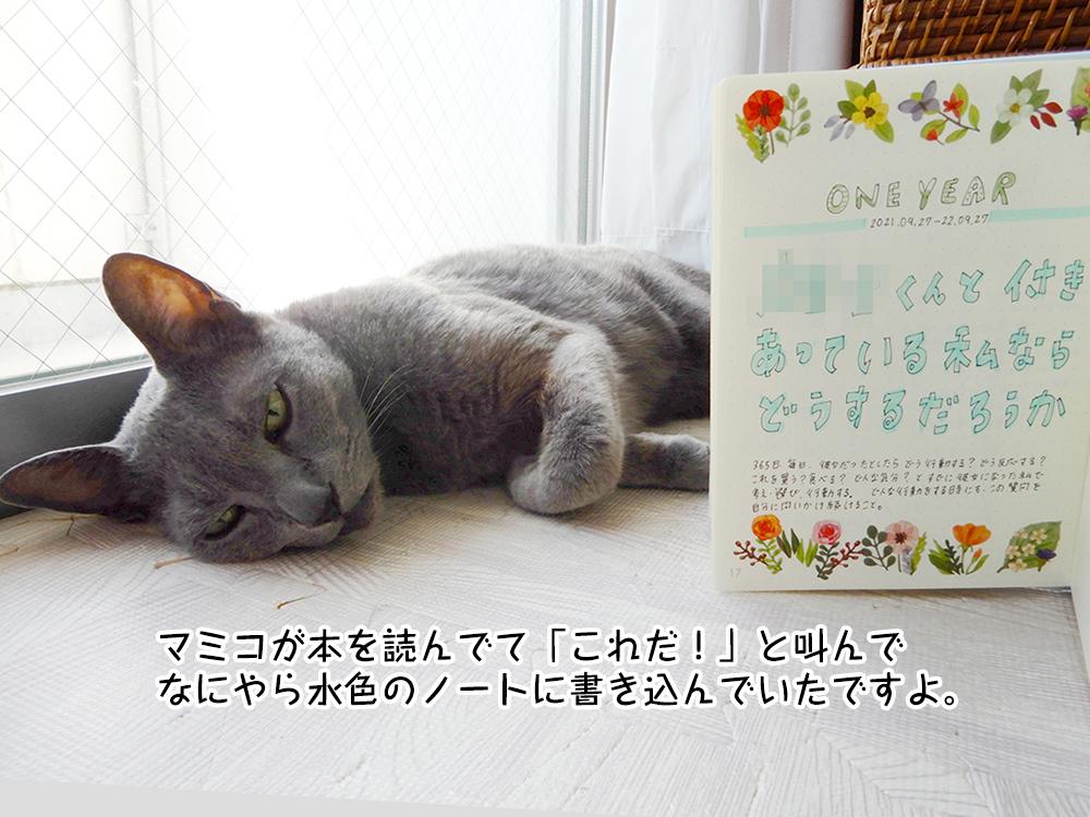 マミコが本を読んでて「これだ!」と叫んで なにやら水色のノートに書き込んでいたですよ。