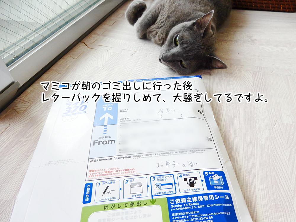 マミコが朝のゴミ出しに行った後 レターパックを握りしめて、大騒ぎしてるですよ。
