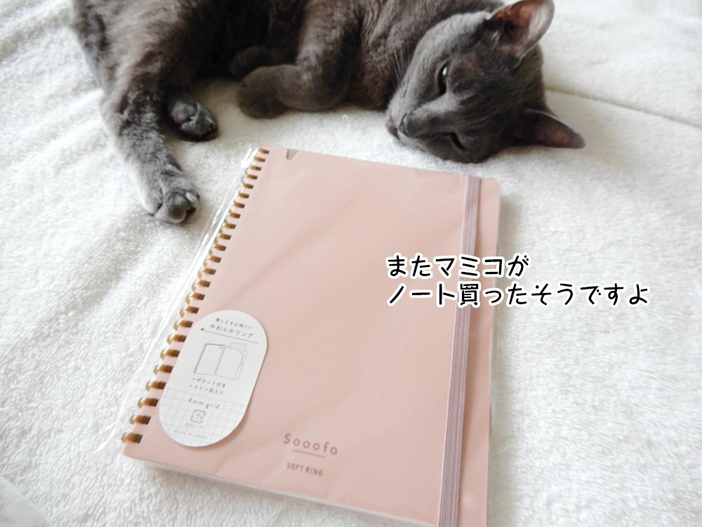 またマミコが ノート買ったそうですよ